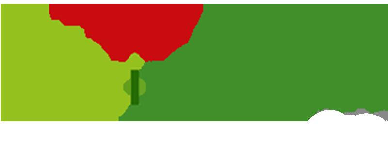 Build Palestine